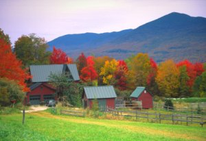 Fall foliage in the Green Mountains of Vermont